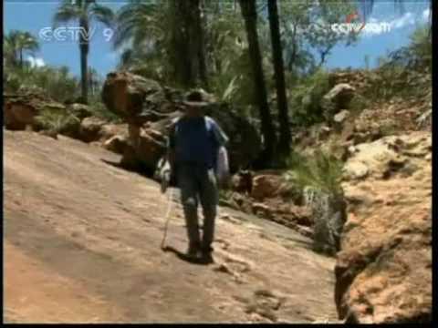 Oldest dinosaur footprints in Bolivia