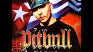 Watch Pitbull Melting Pot video