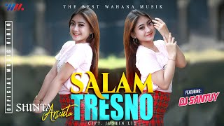 Shinta Arsinta Feat Dj Santuy Salam Tresno Mp3