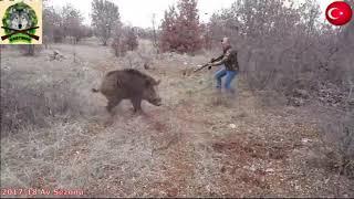 Приколы и выстрелы на охоте