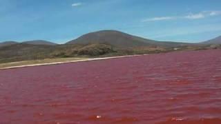 CAMINO A LA LAGUNA ROJA DE CHILE*26/11/2009