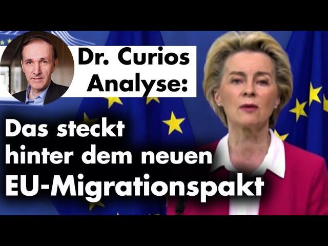 Fraktionsstatement+Pressemitteilung: EU-Pakt für Asyl und Migration