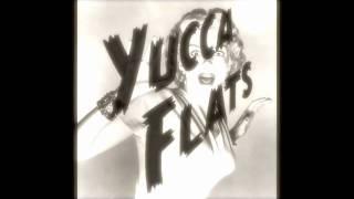 Baixar Beyonce - Single Ladies Remix (Yucca Flats Clean Up)