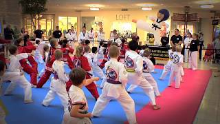 Master Moon's Kicking For Miracles 2013