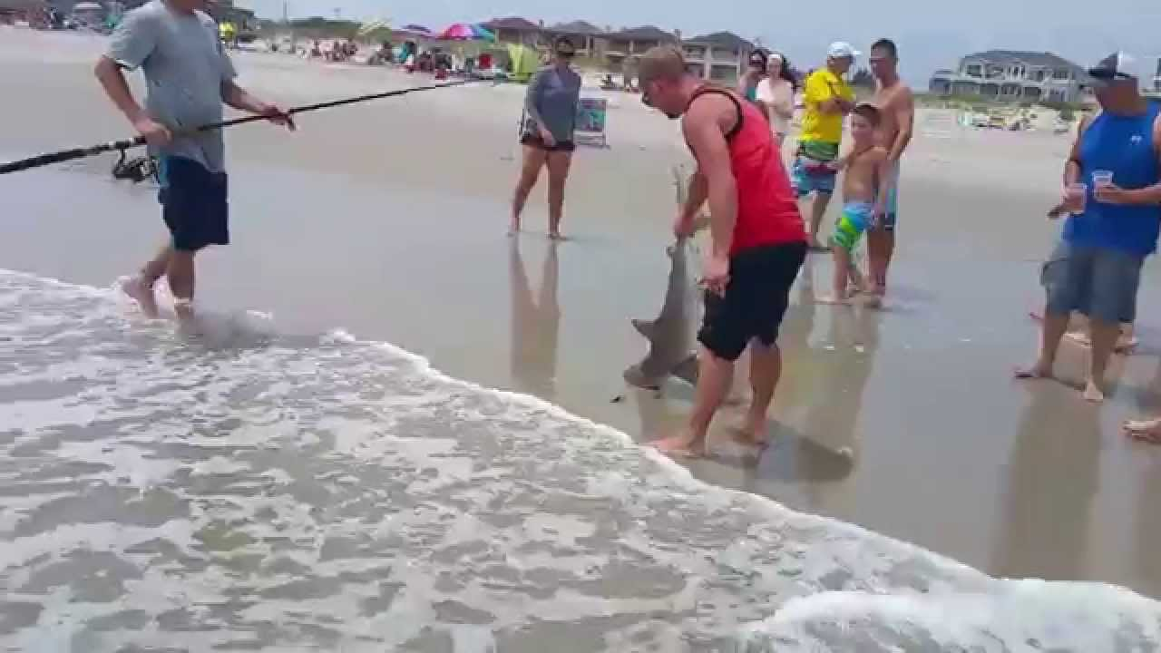 Shark caught from the beach in brigantine nj youtube for Surf fishing nj license