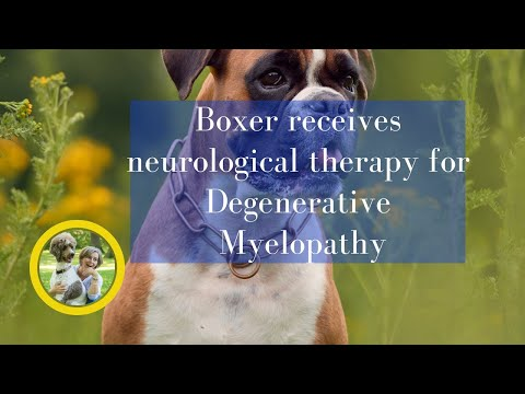 Proven results for Degenerative Myelopathy DM ~ and you can learn it!