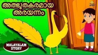 Malayalam Story for Children - അത്ഭുതകരമായ അരയന്നം | Stories for Kids | Moral Stories | Koo Koo TV