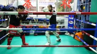 香港泰拳理事會 - 初級教訓班教材 第二節