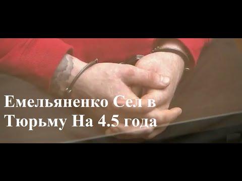 Емельяненко Сел В Тюрьму На 4,5 года