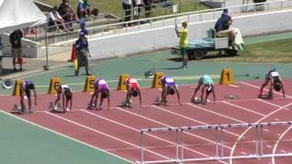H29 南関東 男子八種競技 110mH2組