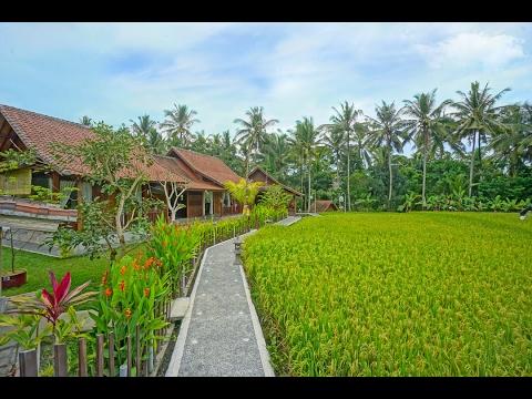 Villa Cinta Ubud Bali Youtube