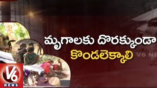 Ground Report On Tribal People Lifestyle In Khammam District   V6 News