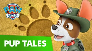 PAW Patrol   Pup Solche #1   Rescue Episode!