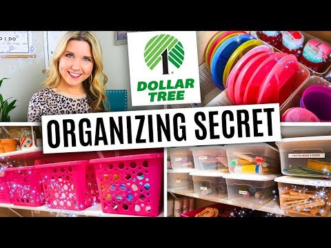 How To Organize For Just $1 ⭐ Dollar Tree Organizing Secrets!!