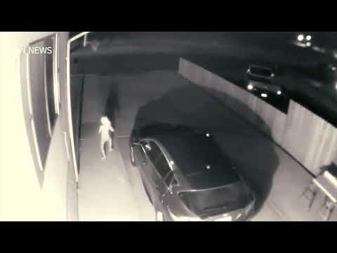Странное существо которое было снято ночью на камеру!