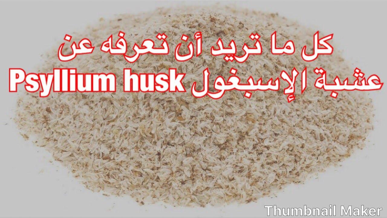 عشبة اسبيغول Psyllium Husk Youtube