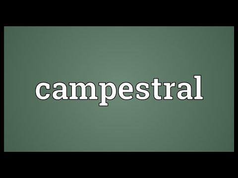 Header of campestral