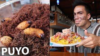 5 comidas que DEBES COMER en el PUYO