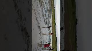 Machli Wala Video - Travel Online