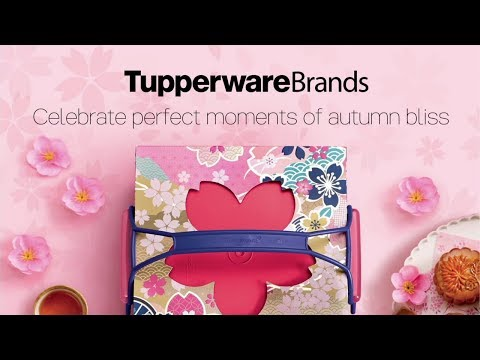 Tupperware Brands Singapore Campaign 6 2017 Highlights