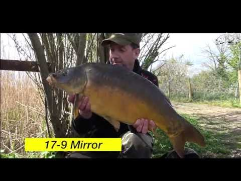 Off the Barrow.  Spring fishing at Meadow Lodge Fisheries