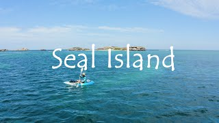 Seal Island | Perth, Western Australia | Travel Vlog | Beaches of Australia