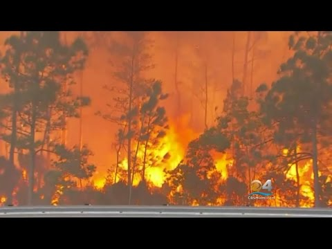 Mandatory Evacuations Ongoing As Fire In Collier County Continues To Grow