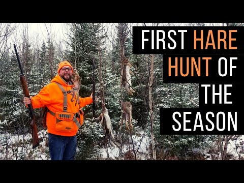 First Snowshoe Hare Hunt Of The 2018/2019 Season