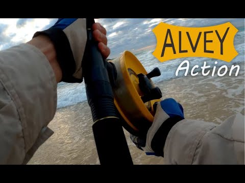 Alvey Action - Sunshine Coast Surf Beach Fishing