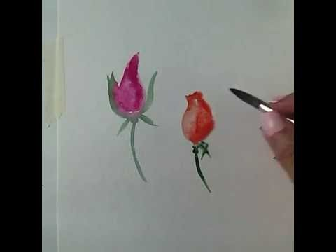 Aquarell fr Anfnger Rosen malen 2  Watercolor for