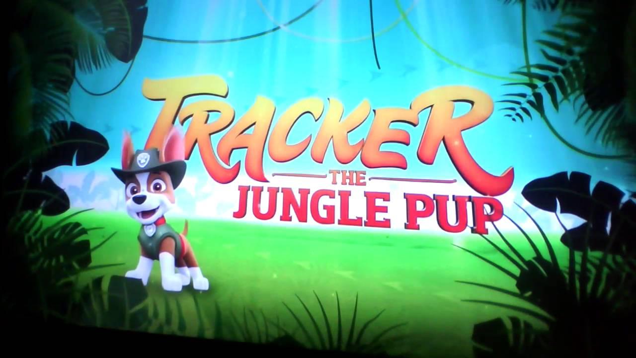 Tracker The Jungle Pup Sneek Peek Youtube