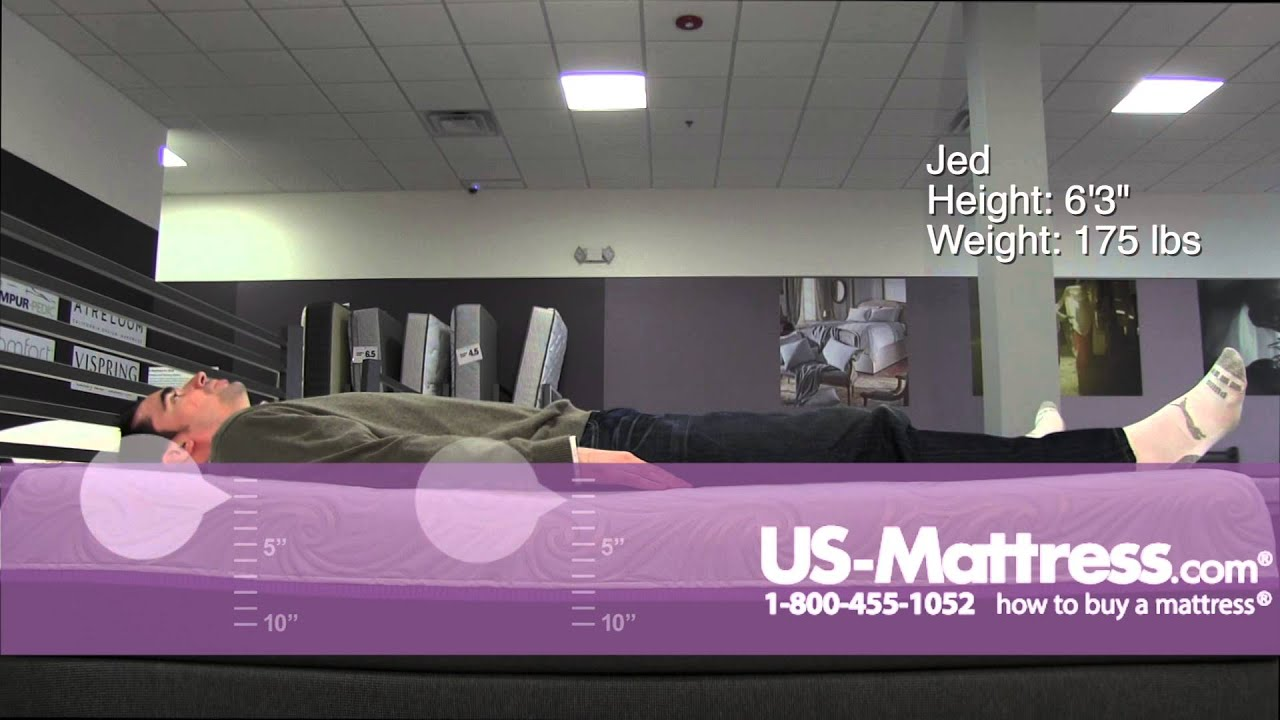 Sealy Optimum Radiance Gold Mattress Comfort Depth With Jed