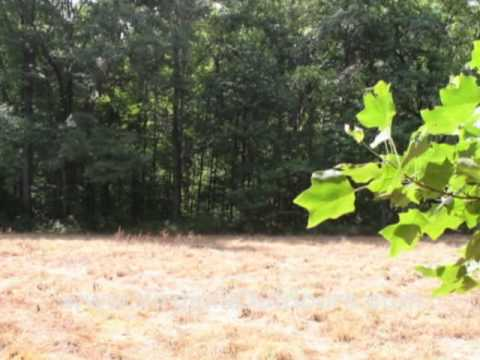 Occoneechee State Park - Panhandle Multi Use Trail