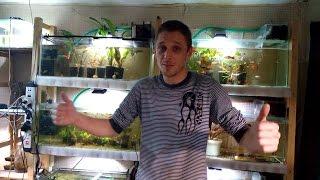 видео Поклейка аквариума своими руками.