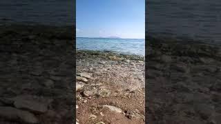 Красное море Шарм Египет отдых Queen Sharm Hotel море