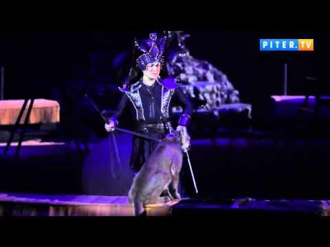 Запашные привезли новое цирковое шоу