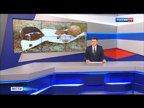 Вести-Волгоград. Выпуск 15.05.20 (9:00)