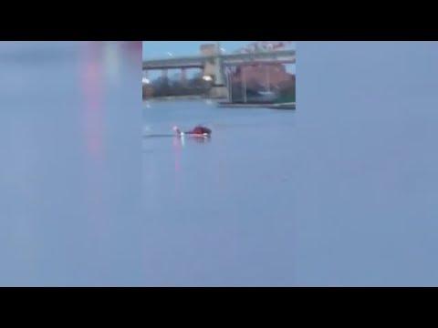New York: Fünf Tote bei Hubschrauber-Absturz im East River
