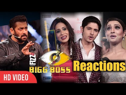 TV Celebrities Reaction On Bigg Boss 11 Contestants | Bigg Boss 11 Reactions