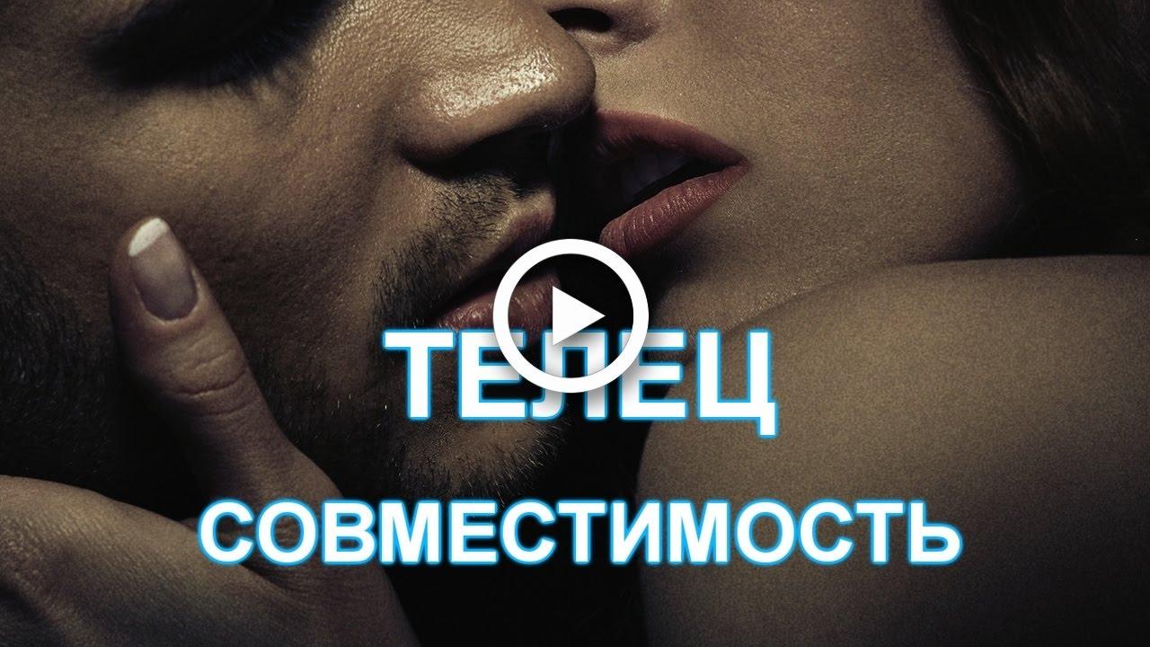 Скорпион телец совместимость в сексе