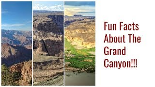 Fun Facts About The Grand Canyon!