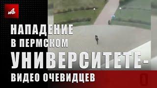 Нападение в Пермском университете — видео очевидцев