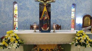 Our Lady Stella Maris, Patroness of Seafarers, Novena 8, Konkani Mass Today, Miramar, 23rd Oct. 2020