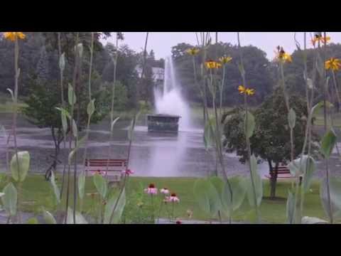 Schenectady Central Park - Rainy Day