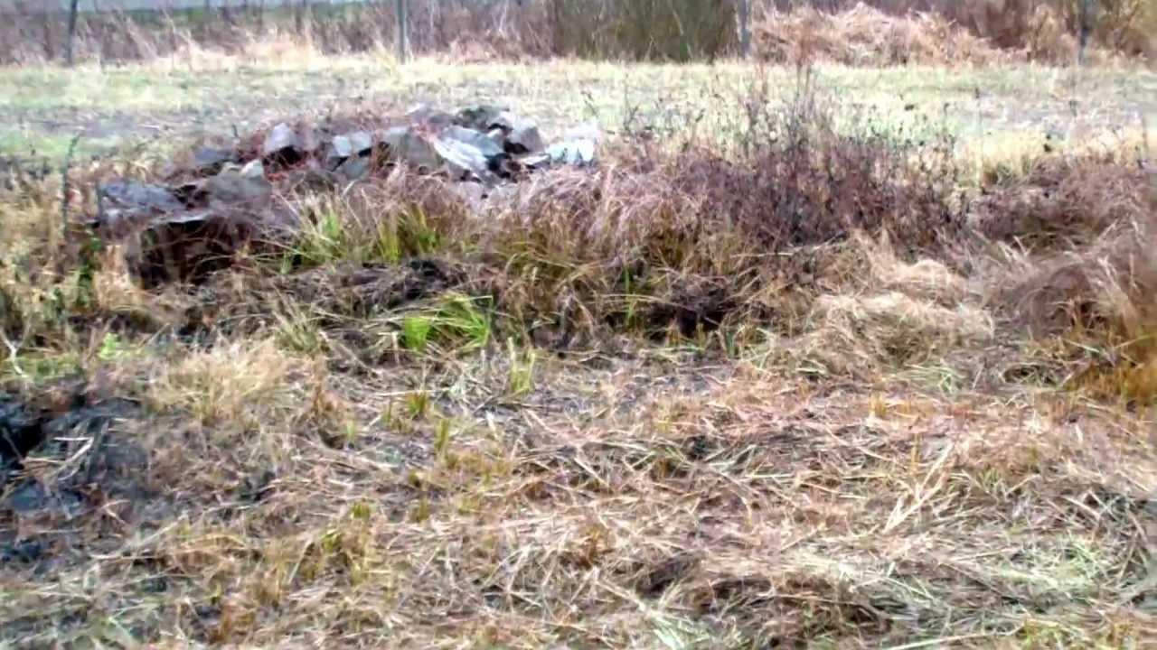 2 дн. Назад. Компания бисквитный комплекс рошен планирует выкупить арендуемую землю у бориспольского горсовета.