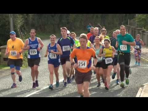 Ferns Half Marathon 2016