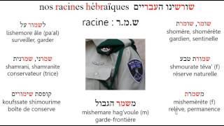 Racineshmr