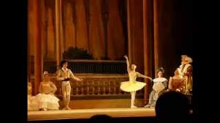 Natalia Osipova - Bridesmaid Variation 1 - Don Quixote