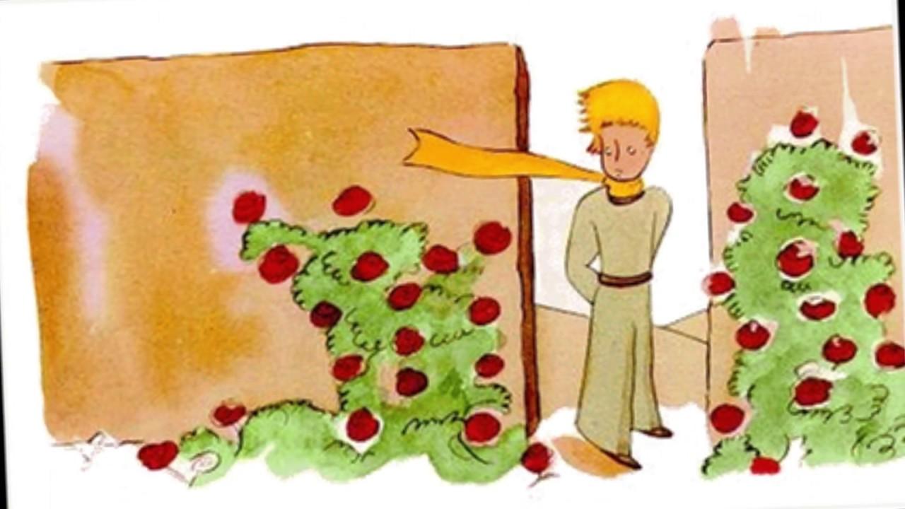 El Principito - Capítulo XX - Jardín de rosas