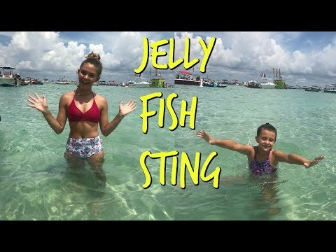 GOT STUNG BY A JELLY FISH! BEST VACATION EVER! GETTING READY FOR ALBERTO! | EMMA AND ELLIE